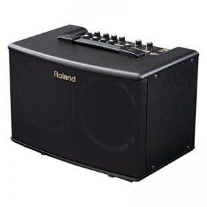 Roland–AC 40Amplificateur de Guitare de la marque Inconnu image 0 produit